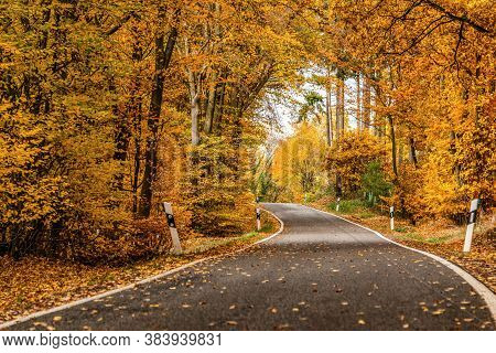 A Winding Road With Loose Fall Leaves Through Autumn Trees In Germany Rhineland Palantino