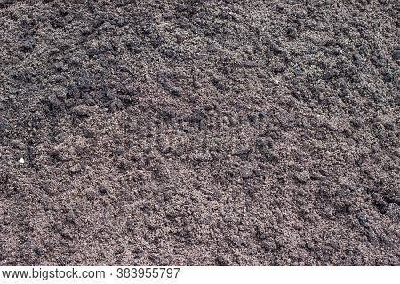 Image Of Mellow Earth For Planting In The Garden Or Field.  Ground Texture For Background.
