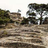 Upward Stone Staircase leading to platform on Yellow Mountain poster