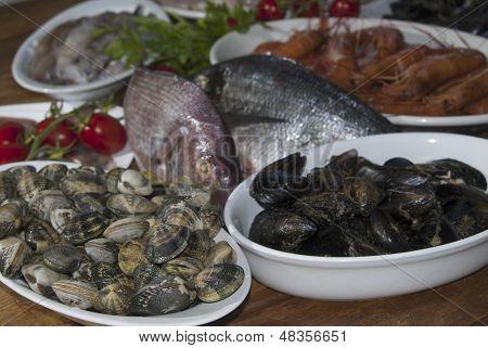 Italian food: mediterranean bluefish and shellfishes various poster