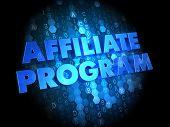 Affiliate Program - Blue Color Text on Digital Background. poster
