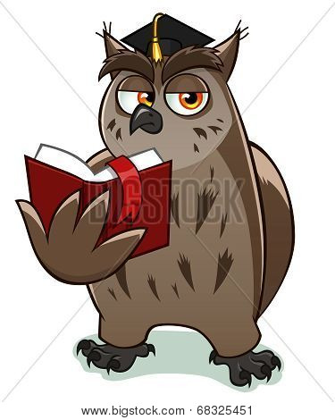 Wise owl teacher holds and reads red book. poster