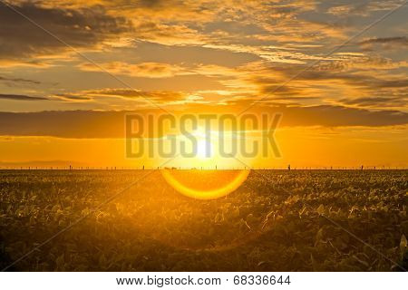 Beautiful Sunrise With Halo In The Countryside