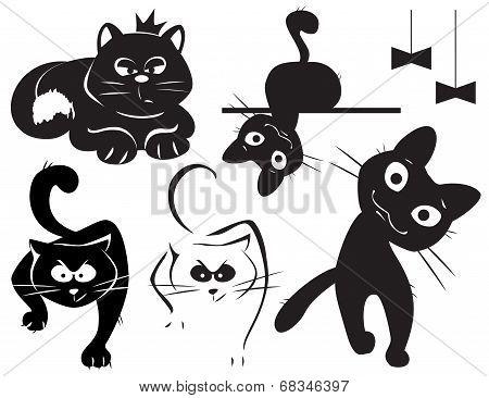 set of black cats