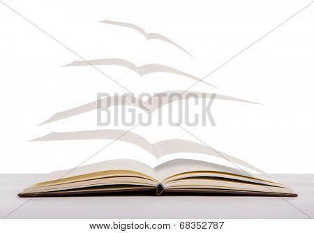 Open flying books
