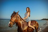 carefree young woman evening beach horse ride poster