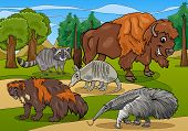 Cartoon Illustrations of Funny American Mammals Animals Characters Group poster