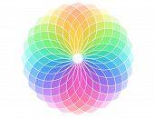 Set of different color samples arranged in color wheel. poster