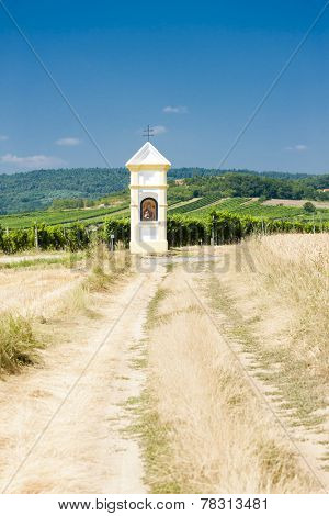 God's torture with vineyard near Retz, Lower Austria, Austria