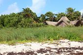 Hut on the island of Cayo Guillermo. Cuba. poster