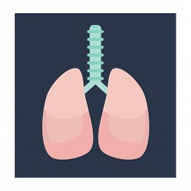 Flat Vector Lungs