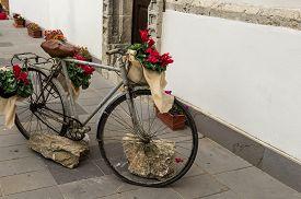 Bicycle Flourished