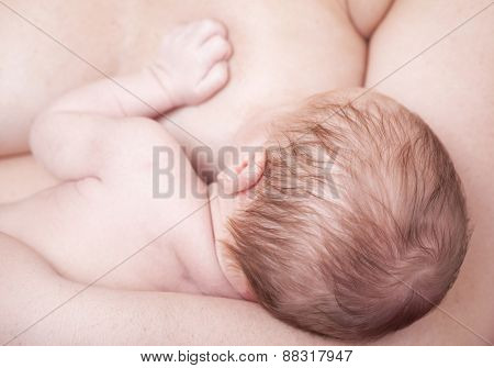 Close-up of a newborn baby breastfeeding