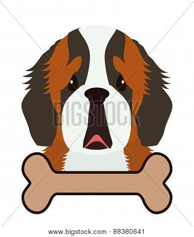 Dog design, vector illustration.