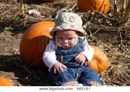 Boy In Pumkin Patch
