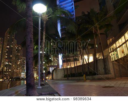 Miami Downtown Night Scene