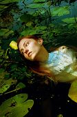 Tender young woman swimming in the pond among water lilies basking in the sun in shallow waters poster
