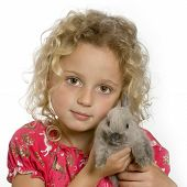 young girl holding a little gray rabbit poster
