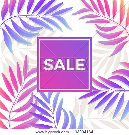 Summer sale bright poster in blu-pink colors with tropical palm leaves on background. Vector greeting card for seasonal price decrease.