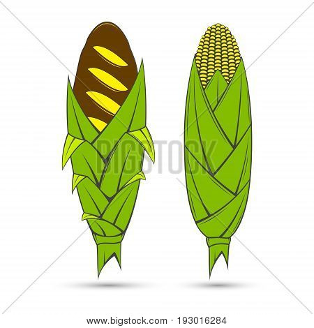 Vector stylized image of a corn bread which is located on the site of the cob corn cob and green with yellow corn.