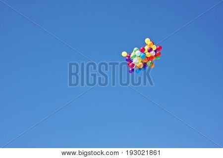 bunch of colorful helium balloons rising into the sky. celebratory background