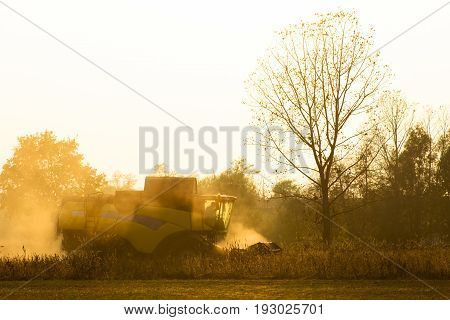 Harvester In Back Light Work In A Field At Sunset