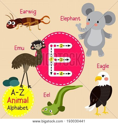 Cute children zoo alphabet E letter tracing of funny animal cartoon for kids learning English vocabulary vector Illustration.