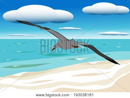 A flying seagull hovers over blue sea