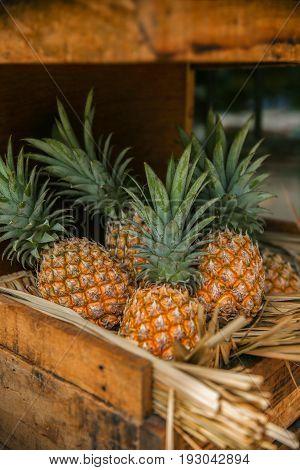 Pineapple background Pineapple in wood box Pineapple Thai
