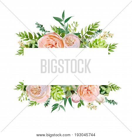 Vector floral design horizontal card design. Soft pink peach english garden rose eucalyptus green fern seasonal branches leaves mix. Greeting invitation wedding editable. Frame border with copy space