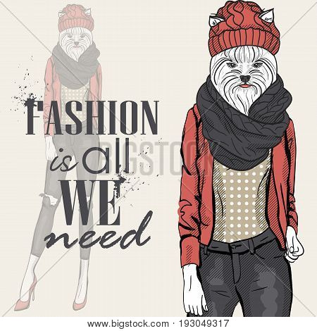 Color sketch of a model with a dogs head in a knitted cap and scarf. Fashion is all we need