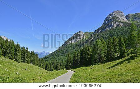 The mid-June rural landscape showing the Carnic Alps around Cason Di Lanza near Paularo Friuli Venezia Giulia north east Italy