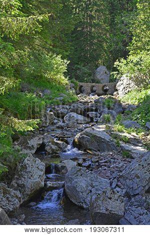 A small concrete bridge across a stream in the mid-June rural landscape of the Carnic Alps near Paularo Friuli Venezie Giulia north east Italy.