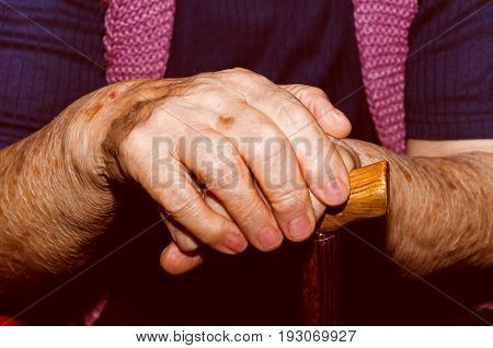 Hands. Hands of old lady with walking stick. Old woman hands with walking stick.