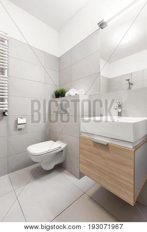 Bathroom With Toilet And Basin