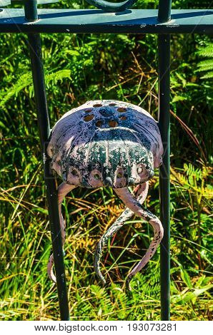 Metal Ornament On A Balustrade In A Seaside Village, Symbolic In The Shape Of A Jellyfish
