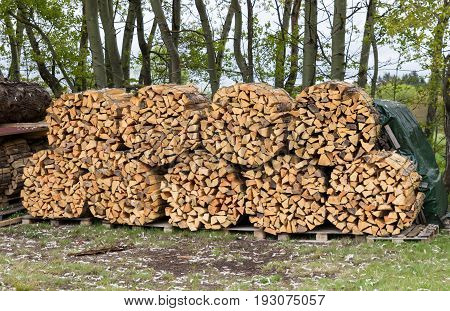 Woodpile of firewood. Chopped firewood for home heating are the woodpiles in the yard.