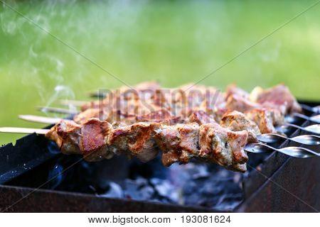 pork shish kebab meat roasted skewers meat, barbecue, grill meat