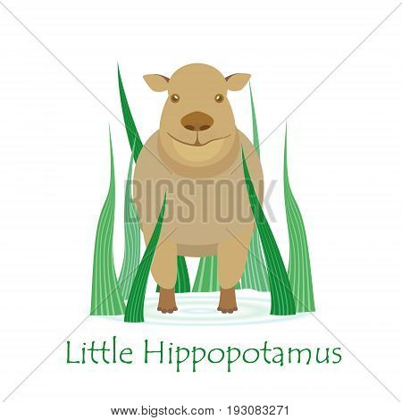 Cute Hippo Calf Isolated on White with the Caption. Made in Flat Style. Vector EPS 10