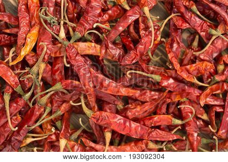 A pile of dried red Chili Peppers