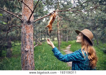 Beautiful Woman Feeding Squirrel In Forest