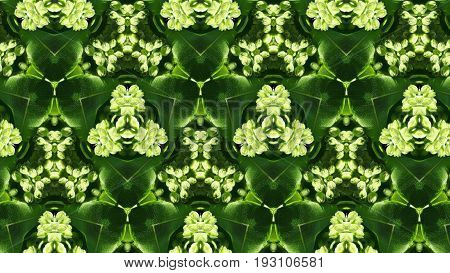 Abstract Green Leaves Photo Pattern And Shape