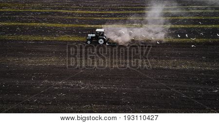 The white tractor plows the field against the backdrop of the black earth, and behind it birds fly and collect food. Aeril view. Agricultural machinery works in the field of spring planting. Plowing from above.