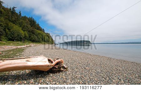 Driftwood at waters edge of Shine Tidelands State Park on Bywater Bay near Port Ludlow in the Puget Sound in Washington State USA