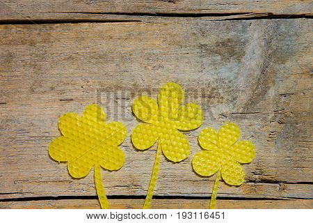 Beeswax, Three Flowers On Wooden Table