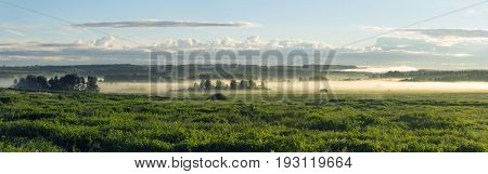 Summer rural landscape with a dawn and a fog