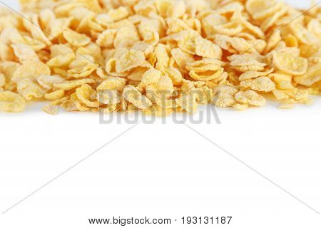 Cornflakes on a white background, close up