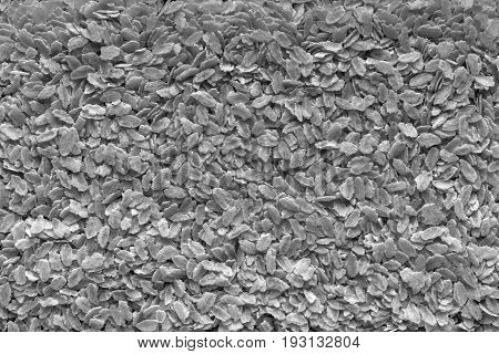 the textured background from granular flakes of an abstract form of dark gray color