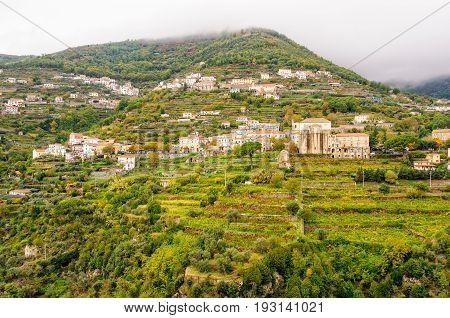 Vineyards at Ravello - Amalfi Coast, Campania, Italy
