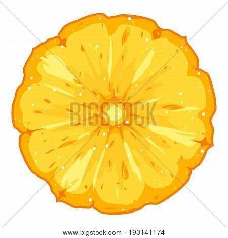 One fresh round pineapple cut slice, detailed piece of ananas, isolated